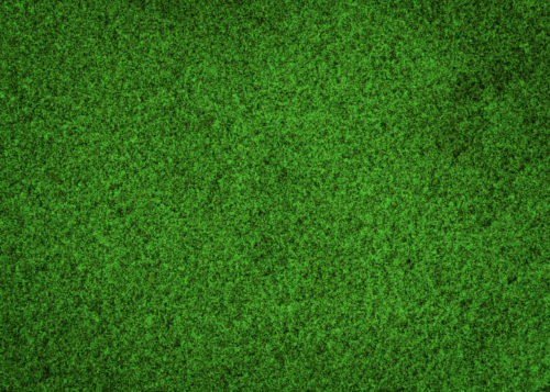 Sable-vert